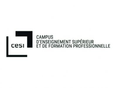 CESI - Formation NDI