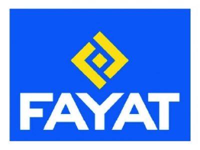 Fayat - Formation NDI